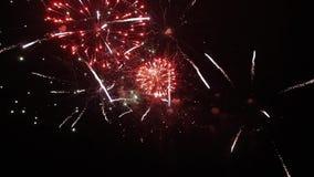 Fundo perfeito do fogo de artifício da noite Uma saudação bonita Vista de longe video estoque