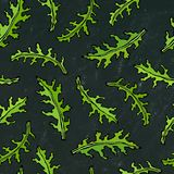 Fundo preto da placa Teste padrão infinito sem emenda da rúcula, Rucola, Rocket Salad Fresh Green Leaves Erva aromática Cozimento ilustração royalty free