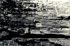 Fundo preto e branco da textura de madeira velha fotografia de stock