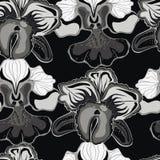 Fundo preto sem emenda com orquídeas cinzentas Imagem de Stock