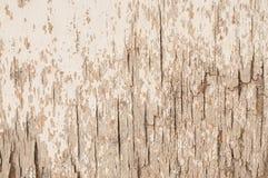 Fundo quebrado textura da madeira compensada da porta Imagens de Stock Royalty Free