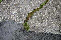 Fundo rachado do asfalto Fotos de Stock