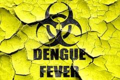 Fundo rachado do conceito da febre de dengue do Grunge fotografia de stock royalty free