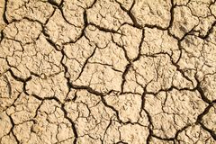 Fundo rachado seco da terra Imagens de Stock
