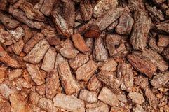 Fundo rachado seco vermelho da textura da rocha, textura vermelha da casca foto de stock royalty free