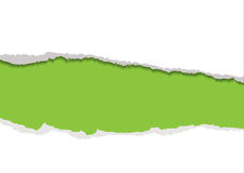Fundo rasgado verde da tira Fotos de Stock