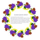 Fundo redondo com frutos de pintura coloridos, lorem ipsum Fotos de Stock
