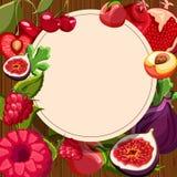Fundo redondo com frutos exóticos ilustração stock