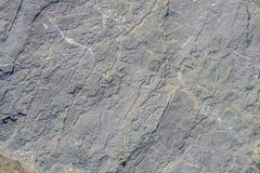 Fundo resistido da textura da superfície da pedra calcária Imagens de Stock