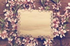 Fundo retro com as flores cor-de-rosa dos ramos Fotos de Stock