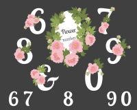Fundo retro do vintage da peônia floral Imagem de Stock
