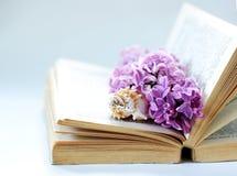 Fundo romântico do vintage com livro velho, a flor lilás, e a pouca concha do mar Imagens de Stock Royalty Free