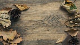 Fundo sazonal com madeira resistida Fotos de Stock