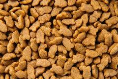 Fundo secado da comida de gato Imagens de Stock