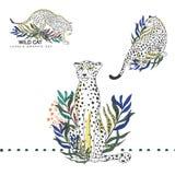 Fundo selvagem bonito tropical ajustado com palmeiras, leopardo da ilustração dos gatos, hibiscus Isolado no fundo branco exotic ilustração stock