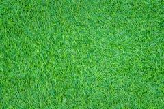 Fundo sem emenda artificial dos testes padrões da grama verde da textura da vista superior imagens de stock royalty free