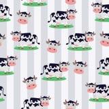 Fundo sem emenda bonito da vaca Fotografia de Stock