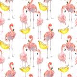 Fundo sem emenda bonito do teste padrão do verão com flamingo e as bananas tropicais Aperfeiçoe para papéis de parede, página da  foto de stock royalty free