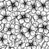 Fundo sem emenda bonito no estilo preto e branco. Ramos de florescência das árvores. Flores do esboço. Símbolo da mola. Fotografia de Stock