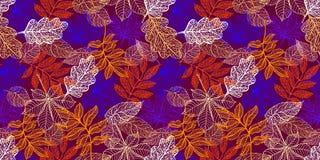 Fundo sem emenda com as folhas de outono coloridas ilustração do vetor