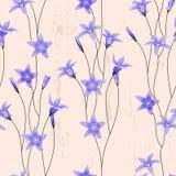 Fundo sem emenda com bellflowers Foto de Stock
