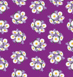Fundo sem emenda com flor do prado Foto de Stock Royalty Free