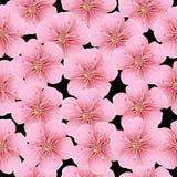 Fundo sem emenda com flores cor-de-rosa ilustração stock