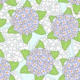 Fundo sem emenda com flores do lilac Fotografia de Stock