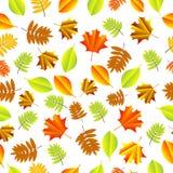 Fundo sem emenda com folhas de outono ilustração do vetor