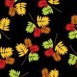 Fundo sem emenda com folhas de outono ilustração royalty free