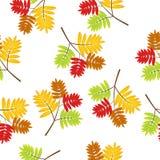 Fundo sem emenda com folhas de outono ilustração stock