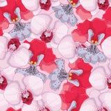 Fundo sem emenda cor-de-rosa com as orquídeas cor-de-rosa e vermelhas Imagens de Stock Royalty Free