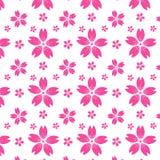 Fundo sem emenda cor-de-rosa do vetor do teste padrão de sakura Fotografia de Stock