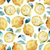 Fundo sem emenda da aquarela do limão e das folhas amarelos Imagens de Stock Royalty Free