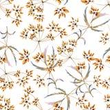 Fundo sem emenda da aquarela que consiste em flores secadas Fotos de Stock Royalty Free