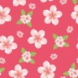 Fundo sem emenda da flor de cereja Fotografia de Stock