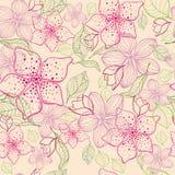 Fundo sem emenda da flor elegante Grupo do rosa Mão desenhada Imagens de Stock Royalty Free