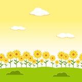 Fundo sem emenda da paisagem Fundo sem emenda do jardim Fundo do jardim do girassol Fundo da paisagem da flor Lan da tarde Imagem de Stock Royalty Free