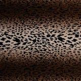 Fundo sem emenda da pele quente do leopardo Fotografia de Stock