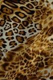 Fundo sem emenda da pele quente do leopardo Fotografia de Stock Royalty Free