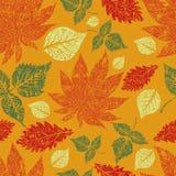 Fundo sem emenda das folhas de outono. Acção de graças Imagens de Stock