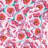 Fundo sem emenda das peônias cor-de-rosa Teste padrão do original da aquarela Imagens de Stock