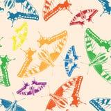 Fundo sem emenda de borboletas coloridas. Imagem de Stock Royalty Free