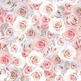Fundo sem emenda de Rosa Imagens de Stock Royalty Free