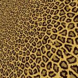 Fundo sem emenda do leopardo para seu projeto Vetor Eps10 Fotografia de Stock