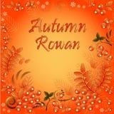 Fundo sem emenda do outono com o ornamento das folhas e das bagas da cinza de montanha Imagens de Stock Royalty Free