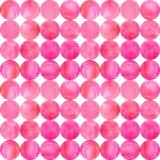 Fundo sem emenda do teste padrão da aquarela do sumário com círculos vermelhos cor-de-rosa coloridos no branco fotos de stock royalty free