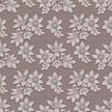 Fundo sem emenda do teste padrão da flor volumétrico do vetor O luxo elegante gravou a textura para fundos, textura sem emenda Imagem de Stock