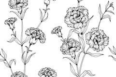 Fundo sem emenda do teste padrão de flor do cravo Fotografia de Stock Royalty Free