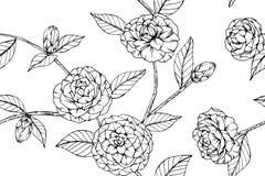 Fundo sem emenda do teste padrão de flor da camélia Foto de Stock Royalty Free